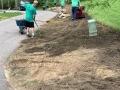 landscape-and-sprinkler-add-on-1