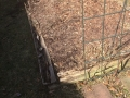 raised-garden-bed-01